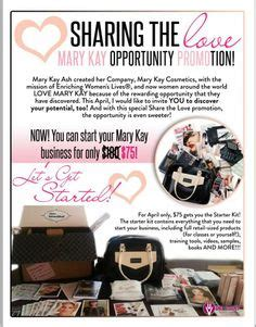 mary kay business opportunity picture 7