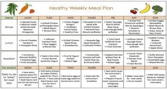 free rapid weight loss diet plan picture 3