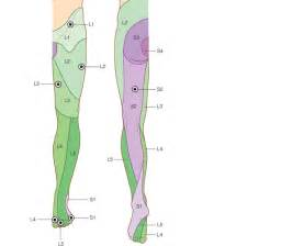 muscle pull in foot picture 9