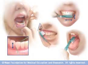 hygiene of the mouth and h by thaddeus picture 7