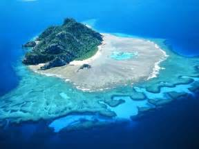 products that island pharmacy sells- fiji island picture 2