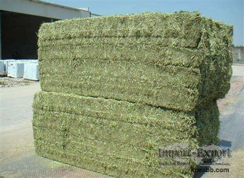drying alfalfa hay picture 10