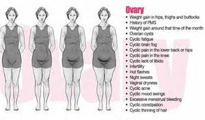 thyroid and belly fat picture 9