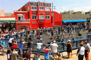muscle beach venice picture 1