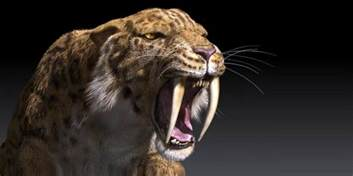 saber tooth tiger picture 3