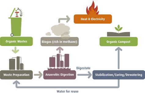 pictures of anaerobic digestion picture 2