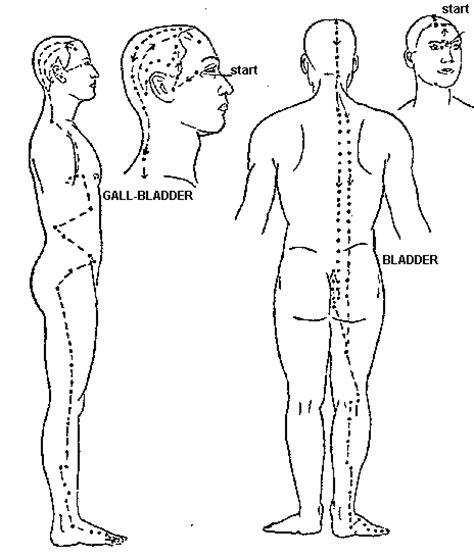 gall bladder pressure picture 1