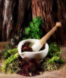 indian herbal medecine picture 14
