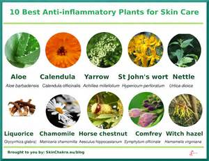 anti-inflammatory skin care picture 6