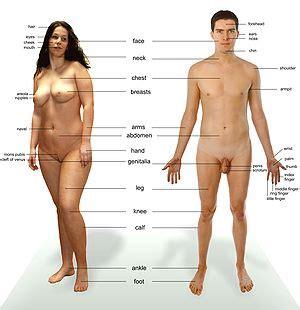 asian female doctors examine men's balls picture 3
