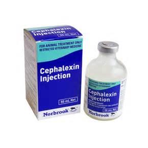 cephalexin no prescription picture 7