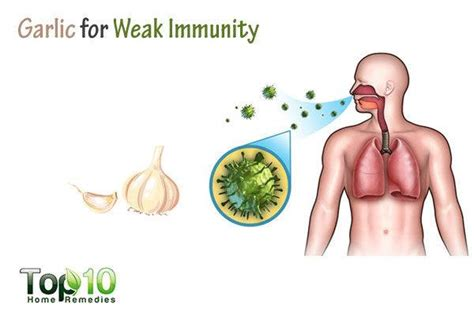 weak immuse system what supplement help picture 4