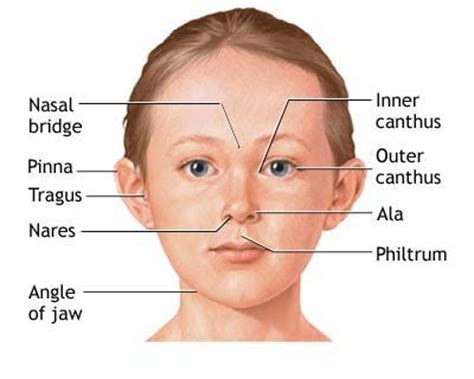 will herpes cause deformity in babies? picture 11