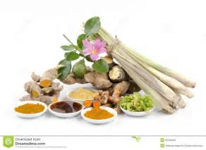 herbal native picture 1