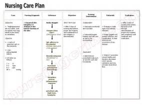 skin integrity care plan examples picture 1