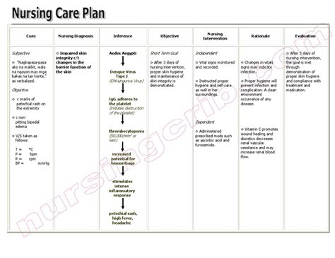 sample care plan for skin integrity picture 1
