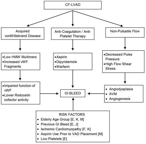 pathophysiology upper gastrointestinal bleeding picture 2