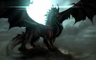 dragon picture 9