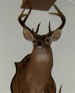 what does a deers penis look like picture 5