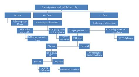 algorithm for gall bladder polyps picture 6