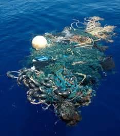 ocean debris picture 18