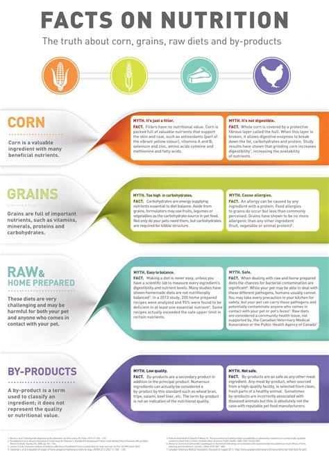 pet diet information picture 1