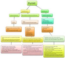 hyperthyroidism medication and diarrhea picture 9
