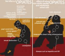 herbal drugs that produce opiate effects picture 7