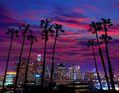 med fet places in los angeles picture 9