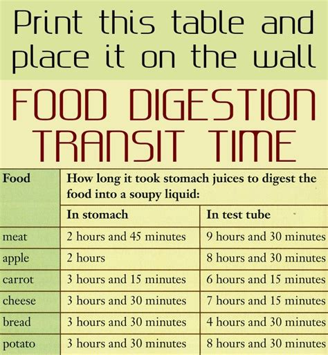 list of digestion time of foods picture 2
