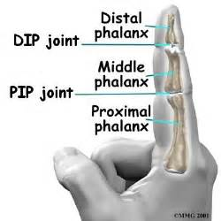 pip joint picture 3