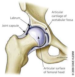 joint pain shoulder hips picture 2