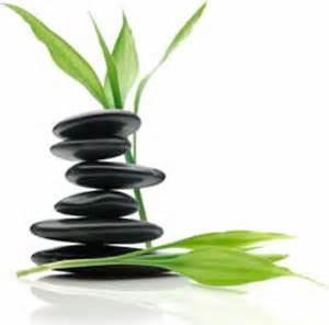 Herbal healer picture 15