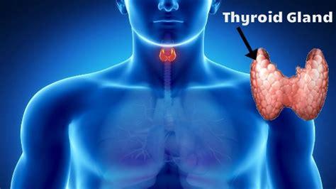 thyroid kase thik hota hai picture 3