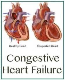 congenital heart condition in adolescent with high blood picture 4