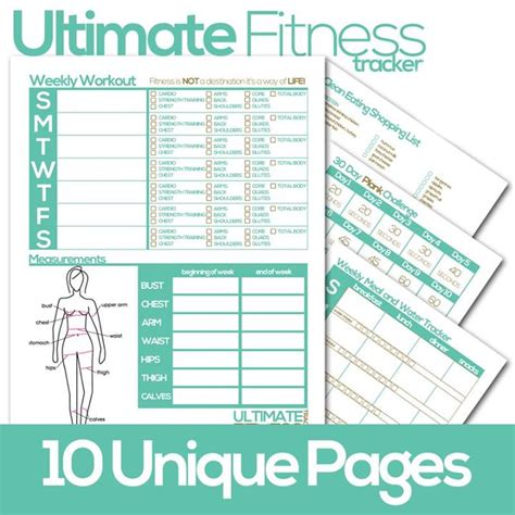 2013 weight loss tracker chart picture 3