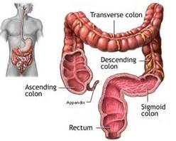gas pain colon picture 7