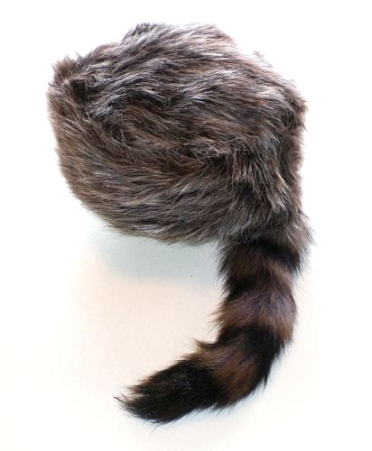 coon skin cap picture 13