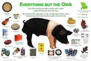 does poptarts have gelatin pork skin picture 31