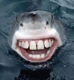 with teeth picture 2