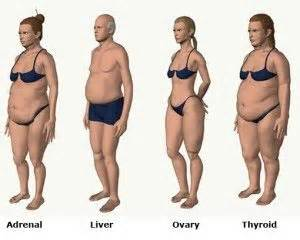does hcg detox your liver picture 7