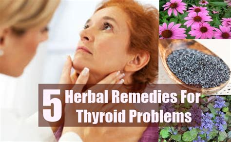 herbal cures for thyroid condition picture 10