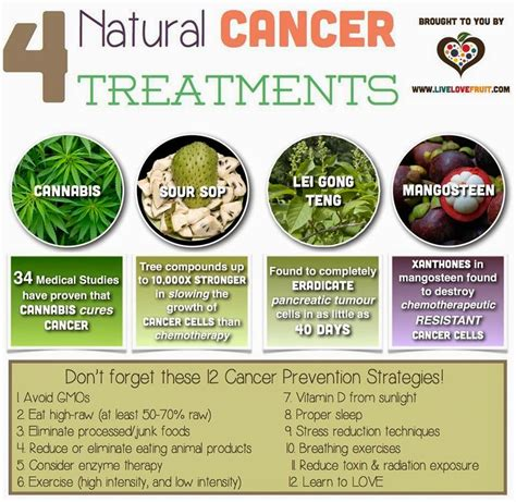 cancer and herbal treatments picture 1