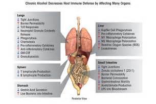 respiratory infections cirrhosis of liver picture 13