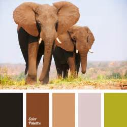 solution for elephant skin picture 1