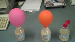 effects of sugar on yeast picture 5