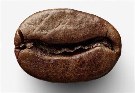 best coffee bean vs retin a picture 2