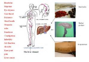 pain in liver area picture 18