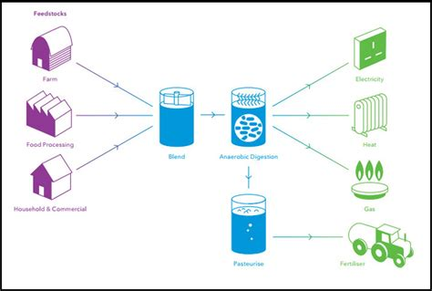 anaerobic digestion picture 15