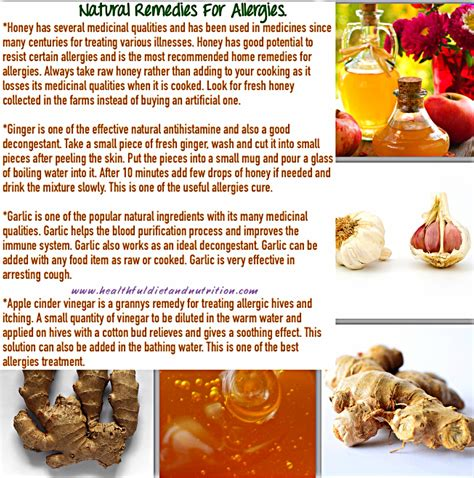 herbal remedies for allergies picture 9